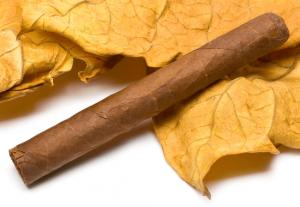 Eine echte Havanna mit einem Tabakblatt im Hintergrund.